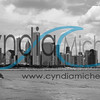 Chicago Cityscape -1