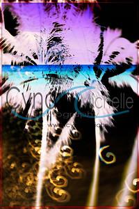 Lavik_2013_Aug_20_10