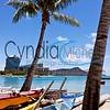 Waikiki Canoes 1