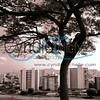 """Don Hong-Oai"" Sepia inspiration - Appraoch 2"