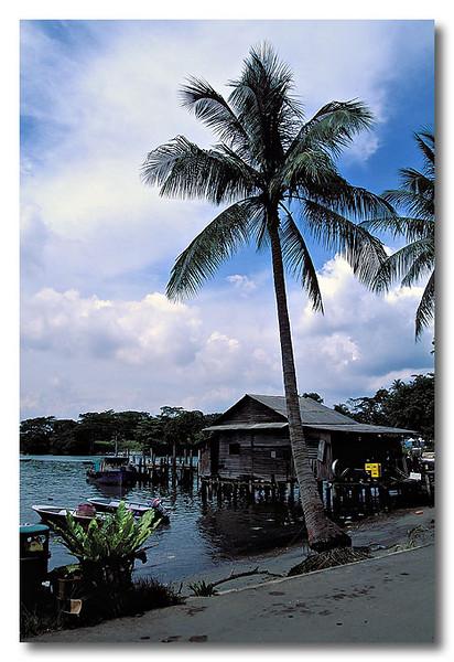 A rustic feeling welcomes you when you reach Pulau Ubin.