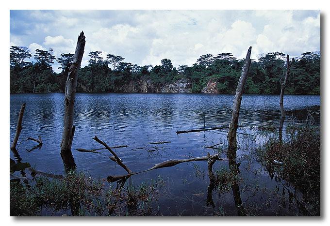 A disused quarry...swimming anyone?? Pulau Ubin.