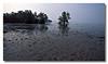 Intertidal plains of Chek Jawa. Pulau Ubin.