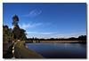 A clear evening blue sky. MacRitchie Reservoir.