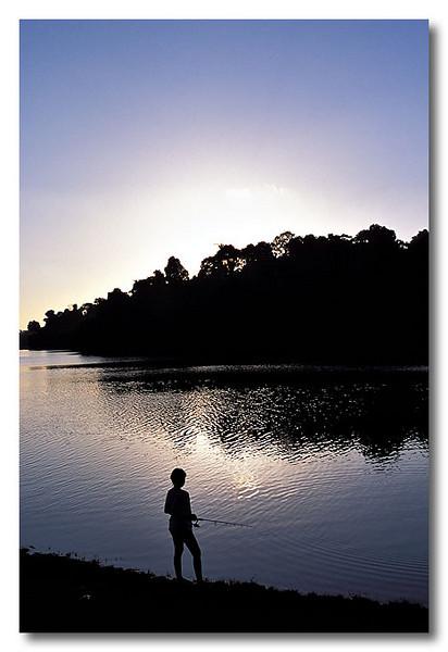 """Here fishy fishy..."" MacRitchie Reservoir."