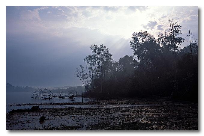 After the rain. Kampong Melayu, Pulau Ubin.