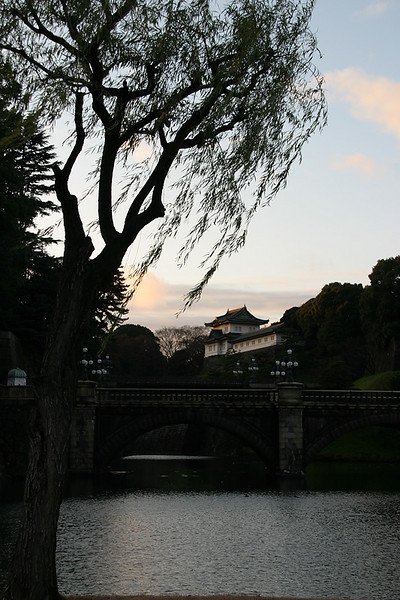 Evening at the Imperial Palace.  Tokyo, Japan.