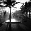 Morning mist.  Villa Amala. Bali, Indonesia.