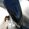 Bee on a water cooler. Capitol Park. Sacramento.