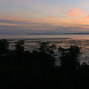 Sunrise at Chek Jawa.