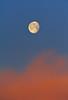 Mooning the Morning