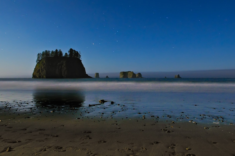 Lunar Lit Beachcombing