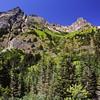 A Peak Cascadian Experience Vertorama