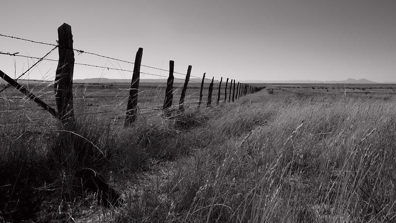 Fenced Eternity