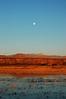 A Hunter's Full Moon Sunrise