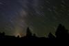 Star Streak Silhouettes