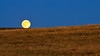 Harvest Moon On the Line