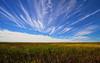 Nebraska Cloudscapes Rule!