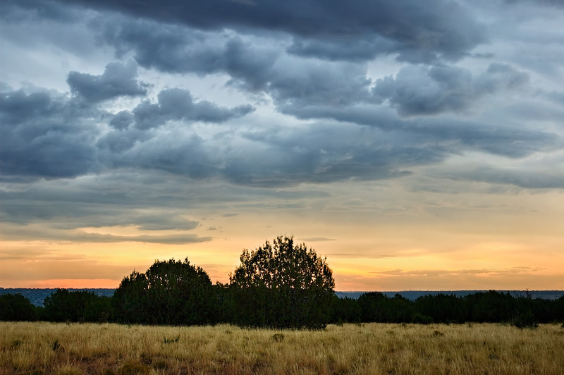 Purgatoire River Sunset Juniper Sentinels