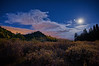 Riparian  Moonrise