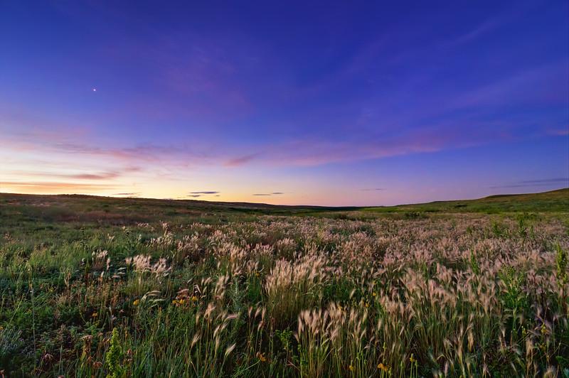 Venus Kissing A Prairie Morn