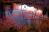 Prismatic Fall Teton Sunset Pool