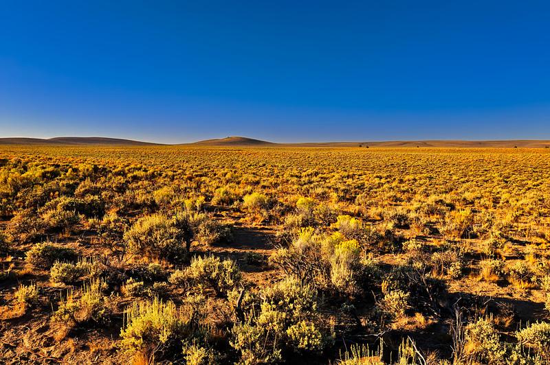 Early Morning on Oregon's High Desert