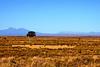 From Prairie to Peaks En Plein Air