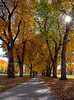 Vanishing Autumn Point @ The CSU Oval