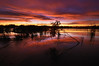 A Sunset Worth Wading For