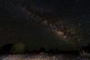 The Pleasure of Pinon Juniper Forest at Night