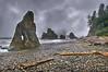 Rainy Olympic Coastal Memories