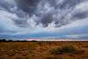 Purgatorie Convection