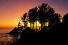 ▲ Shapely Sunset ▼