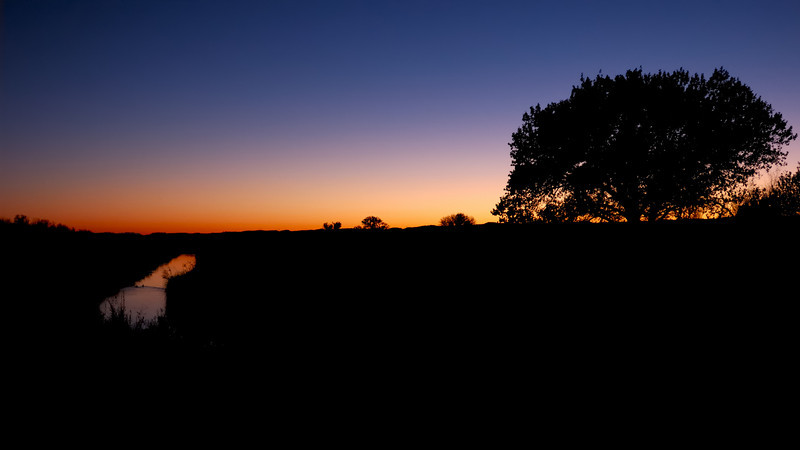 Bosque Sunset Minimalism