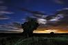 Soaring Aeronauts at Moonset