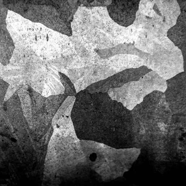 abstract in B&W-1498