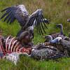 Kenya-oct-2008--3993