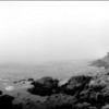 Pescadero Point In Fog