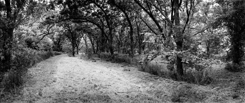 Pathways 1 (12)