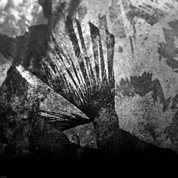 abstract in B&W-1494