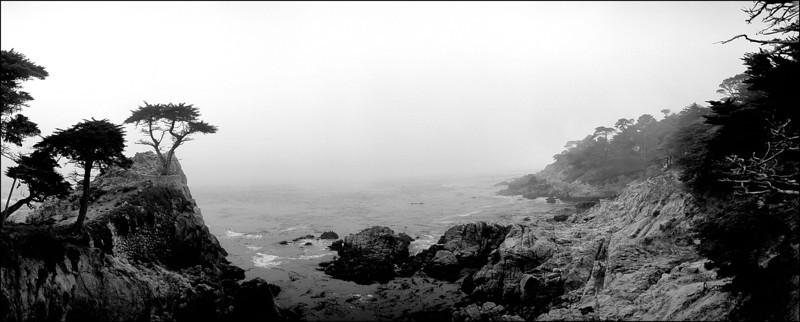 Pescadero Point In Fog
