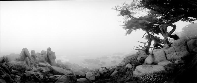 Pescadero Point 7