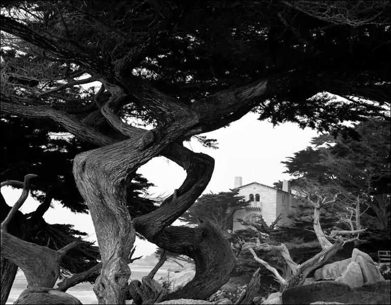 Pescadero Point 9