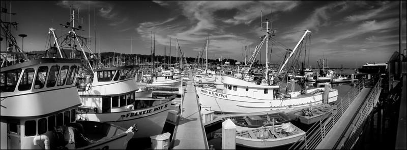 Monterey Fishermans Wharf 1
