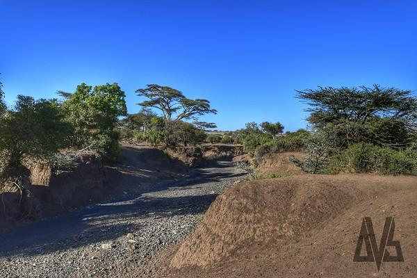 Olduvai Gorge. Tanzania 2014