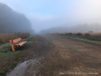 Tennessee Valley Beach in Mill Valley, California, Jane Farley 2018