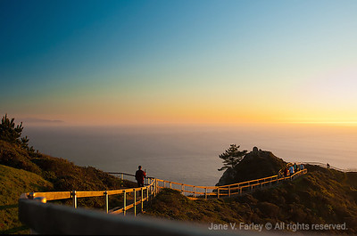 Mill Valley and Muir Beach