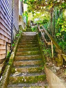 Sausalito Stairs