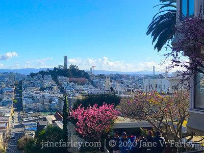 North Beach and Coit Tower from Lombard Street